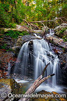 Urumbilum Falls Coffs Harbour Photo - Gary Bell