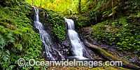 Twin Falls Lamington National Park Photo - Gary Bell