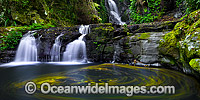 Elabana Falls Lamington National Park Photo - Gary Bell