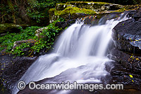 Lamington National Park Waterfall Photo - Gary Bell