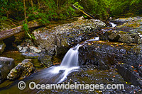 Urumbilum Waterfall Photo - Gary Bell