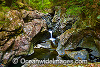 Urumbilum Rainforest Waterfall Photo - Gary Bell