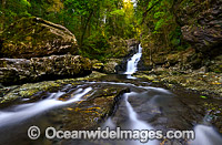 Coachwood Falls Dorrigo National Park Photo - Gary Bell