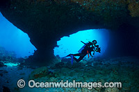 Diver and Coral Reef Christmas Island Photo - Gary Bell