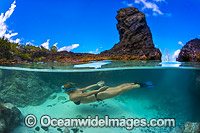 Christmas Island Rock pool Photo - Gary Bell
