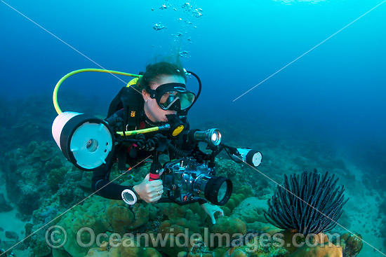 Underwater photographer exploring and photographing a tropical coral reef at Christmas Island, Indian Ocean, Australia. Photo - Gary Bell