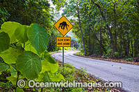 Crab warning sign Christmas Island Photo - Gary Bell