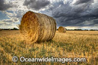 Straw Bales in field Photo - Gary Bell