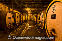 Wine Barrels at Winery Photo - Gary Bell