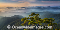 Lookout New England National Park image