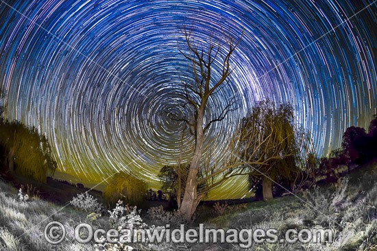 Stars trails of the night sky, photographed during a frost near Uralla, Northern Tablelands, New South Wales, Australia. Photo - Gary Bell