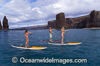 Paddle-boards Hawaii Photo - David Fleetham