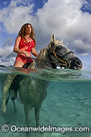 Horseriding Cook Islands Photo - David Fleetham