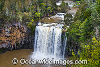 Dangar Falls Dorrigo Photo - Gary Bell