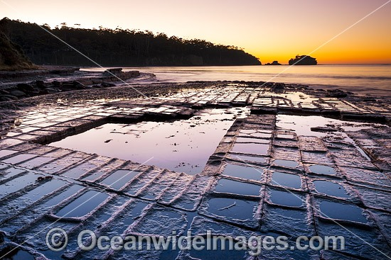Tessellated Pavement, during sunrise. This natural rock pavement bears this name because it is fractured into polygonal blocks that resemble tiles of a mosaic floor. Eaglehawk Neck, Tasman Peninsula, Tasmania, Australia. Photo - Gary Bell