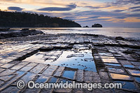 Tessellated Pavement Tasmania Photo - Gary Bell