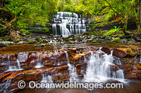 Liffey Falls Tasmania photo