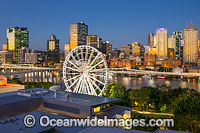 Brisbane City Photo - Gary Bell