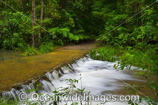 River crossing and cascade, situated at Bruxner Park Flora Reserve, near Coffs Harbour, New South Wales, Australia. Photo - Gary Bell