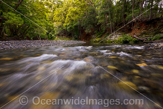 Rainforest water rapids in the Never Never River, situated in the Promised Land, near Bellingen, New South Wales, Australia. Photo - Gary Bell