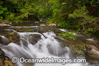 Magic Pools Coffs Harbour Photo - Gary Bell