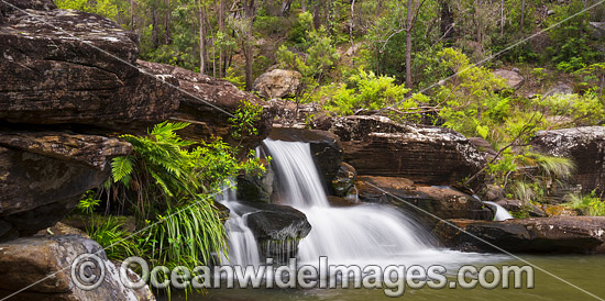 Sherwood Falls, situated in Sherwood Nature Reserve, near Glenreagh, New South Wales, Australia. Photo - Gary Bell