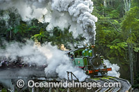 Puffing Billy Belgrave Photo - Gary Bell