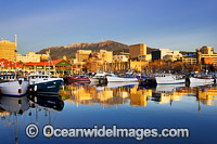 Constitution Dock Hobart Tasmania Photo - Gary Bell