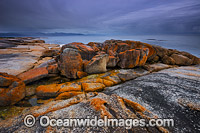 Bicheno Tasmania photo