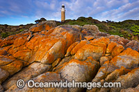 Eddystone Point lighthouse Photo - Gary Bell