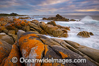 Bay of Fires Tasmania Photo - Gary Bell