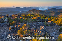 New England National Park view image
