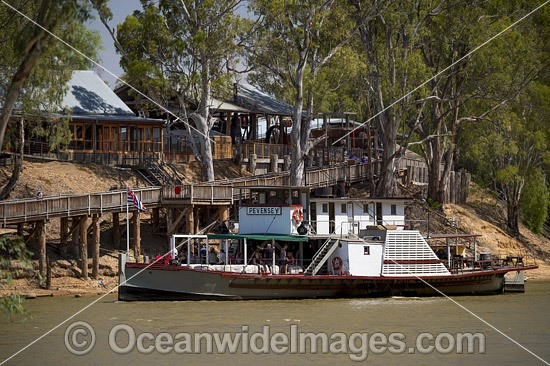Historic wood fired paddlesteamer, PS Pevensbey, cruising down the Murray River at Echuca with historic wharf in background, Victoria, Australia. Photo - Gary Bell
