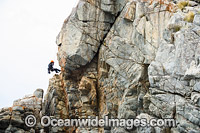 Rock Climbers Frecyenit National Park image