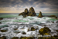 Camel Rocks Bermagui Photo - Gary Bell