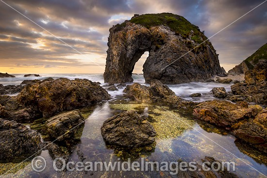 Coastal Seascape showing sunrise at Horse Head Rock, Bermagui, New South Wales, Australia. Photo - Gary Bell