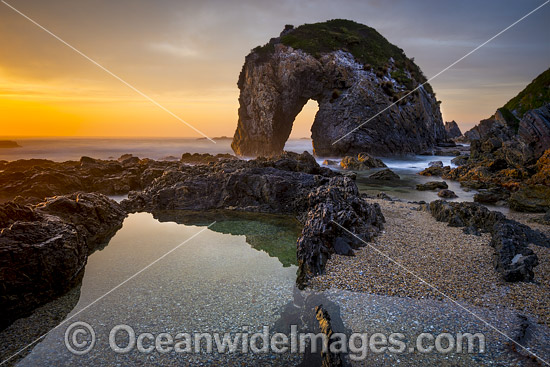 Coastal Seascape, showing sunrise at Horse Head Rock. Bermagui, New South Wales, Australia. Photo - Gary Bell