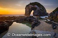 Horse Head Rock Bermagui Photo - Gary Bell