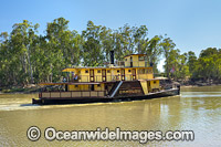 PS Emmylou Echuca Photo - Gary Bell