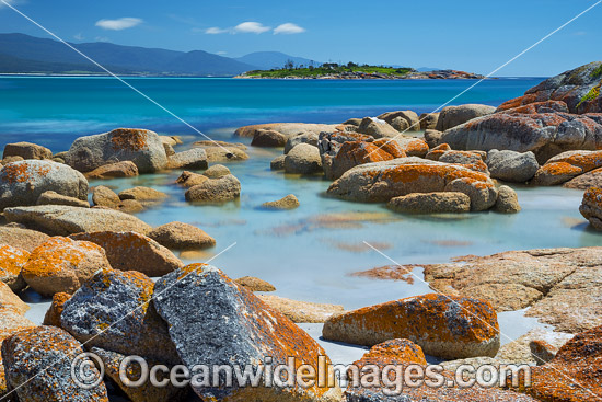 Lichen covered granite boulder coastline, showing Diamond Island. Bicheno, Tasmania, Australia. Photo - Gary Bell