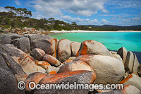 Bay of Fires Tasmania photo