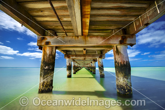 Beneathe Rye Pier, situated in Port Phillip Bay at Rye. Mornington Peninsula, Victoria, Australia. Photo - Gary Bell
