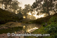 Water gully on farmland Northern Tablelands Photo - Gary Bell