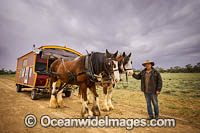 Horse drawn wagon Menindee Photo - Gary Bell