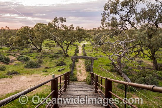 Ramp to the Historic Kinchega Woolshed, built in 1875, is situated in the outback Central Darling district near Menindee, in Kinchega National Park, New South Wales, Australia. Photo - Gary Bell