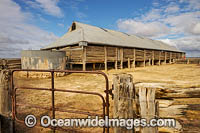 Mungo Woolshed Photo - Gary Bell