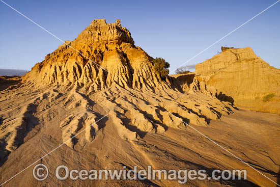 Sunset picture of eroded sand and mud dunes, known as 'Walls of China', situated on the fringe of Lake Mungo. Mungo World Heritage National Park, south-western New South Wales, Australia Photo - Gary Bell