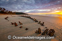Buster Shipwreck at sunrise Photo - Gary Bell
