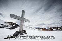 Grave at Antarctica Photo - Chris & Monique Fallows