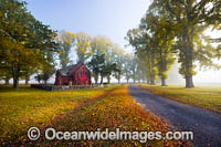 Gostwyck Chapel in Autumn Photo - Gary Bell